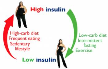 High insulin causes weight gain