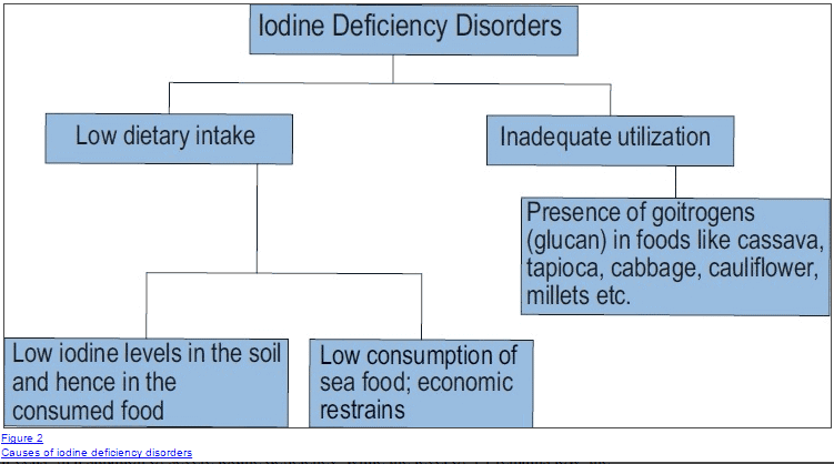causes of iodine deficiency