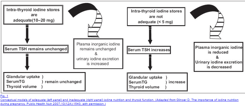 iodine deficiency and thyroid function
