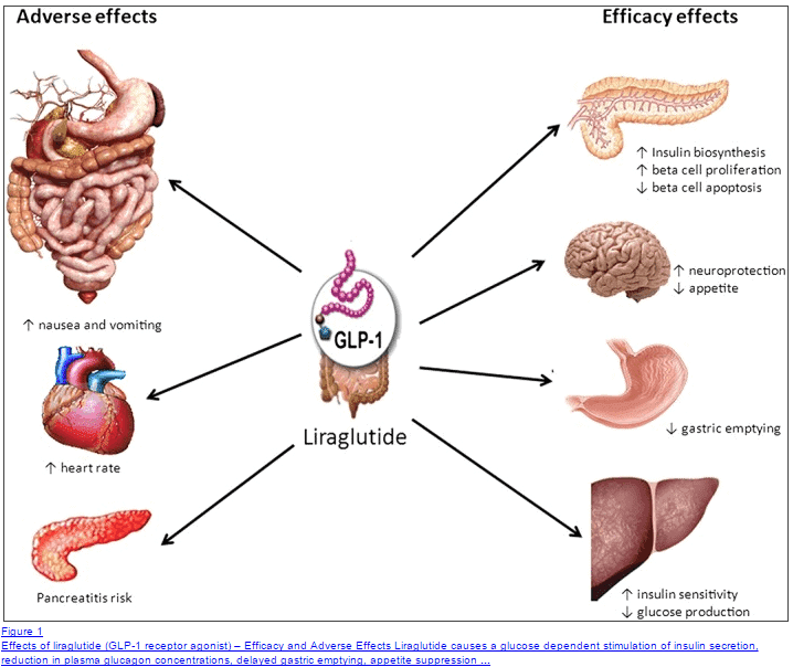 Liraglutide for hypothalamic obesity disorder