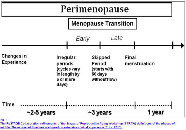 progesterone changes over time in the female