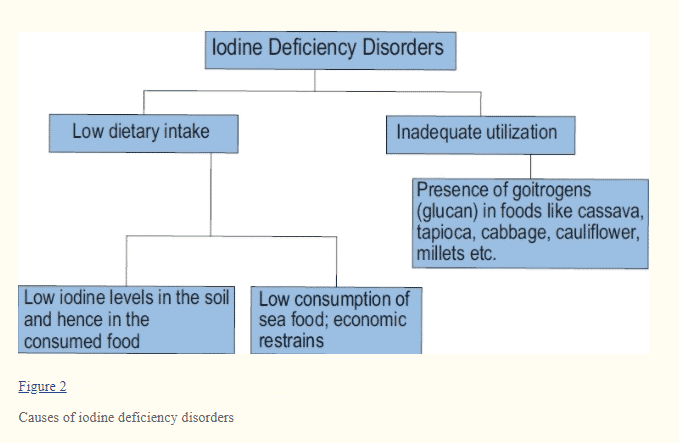 causes of iodine deficiency disorders