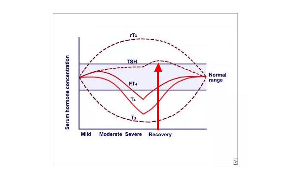 TSH based on disease severity