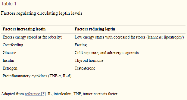 factors which influence serum leptin levels