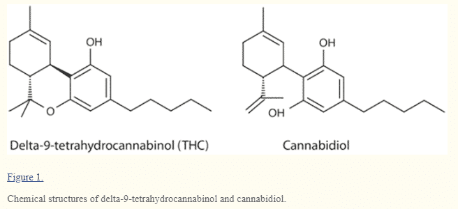 THC vs CBD chemical structure