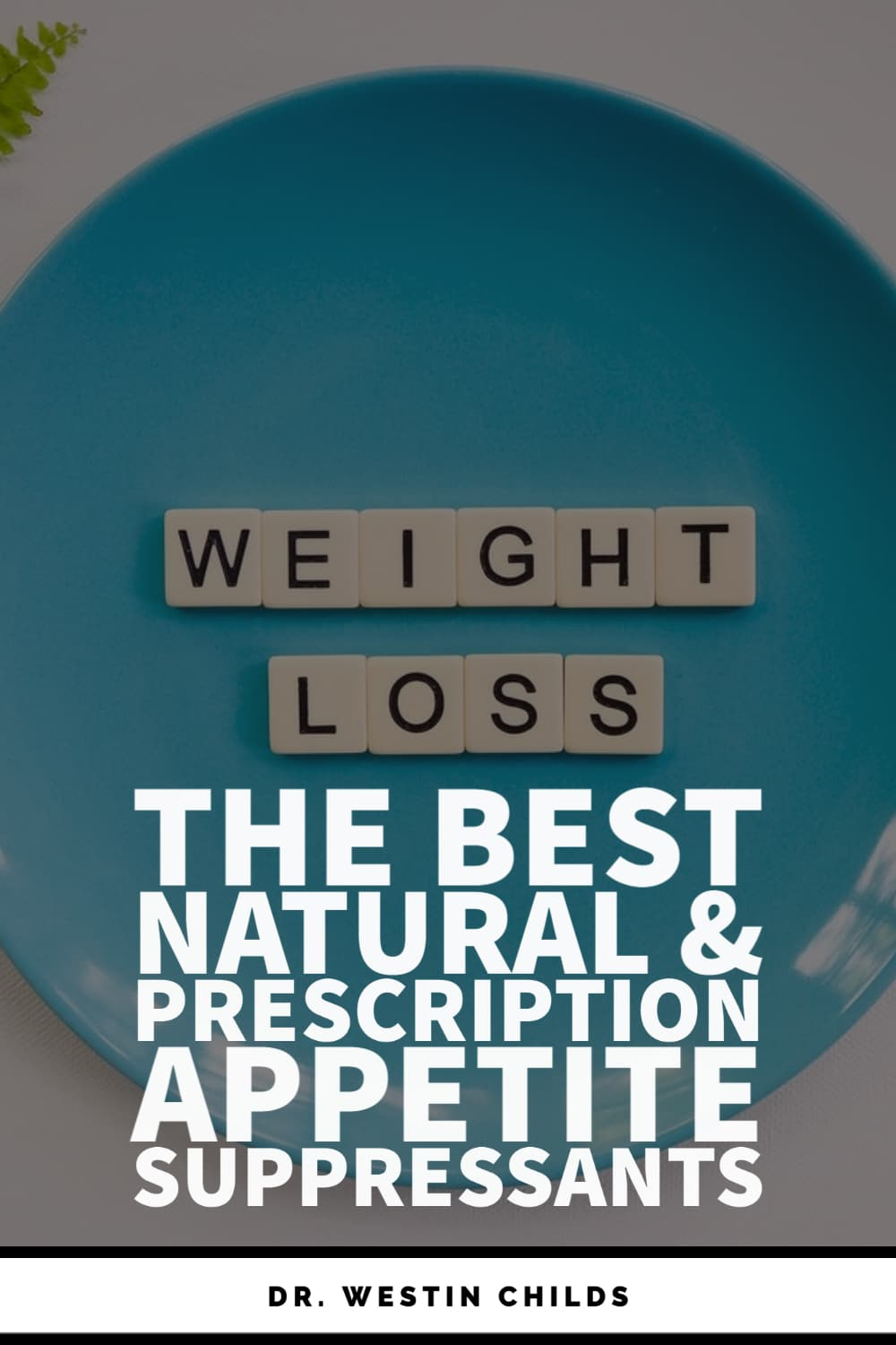 the best natural and prescription appetite suppressants