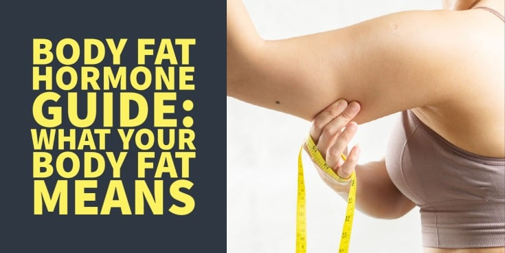 body fat hormone guide: what your body fat tells you about your hormones