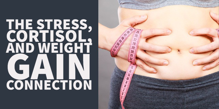 the stress, cortisol, and weight gain connection