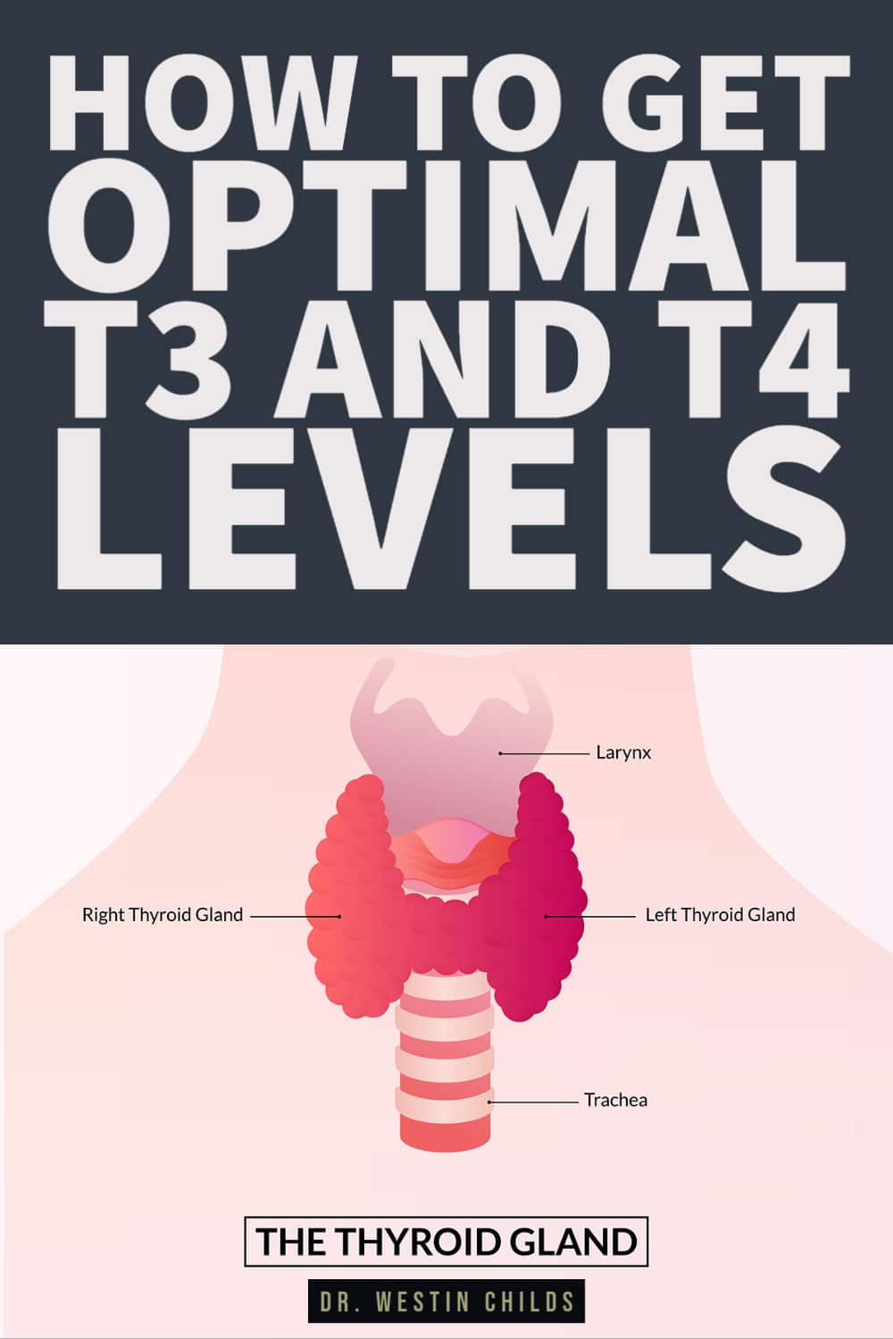 how to get optimal t3 and t4 levels